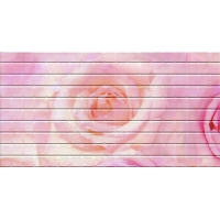 Мозайка № 24 (Роза-2) 0,48*0,96 серия