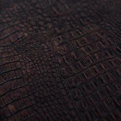 Crocodile, коричневый